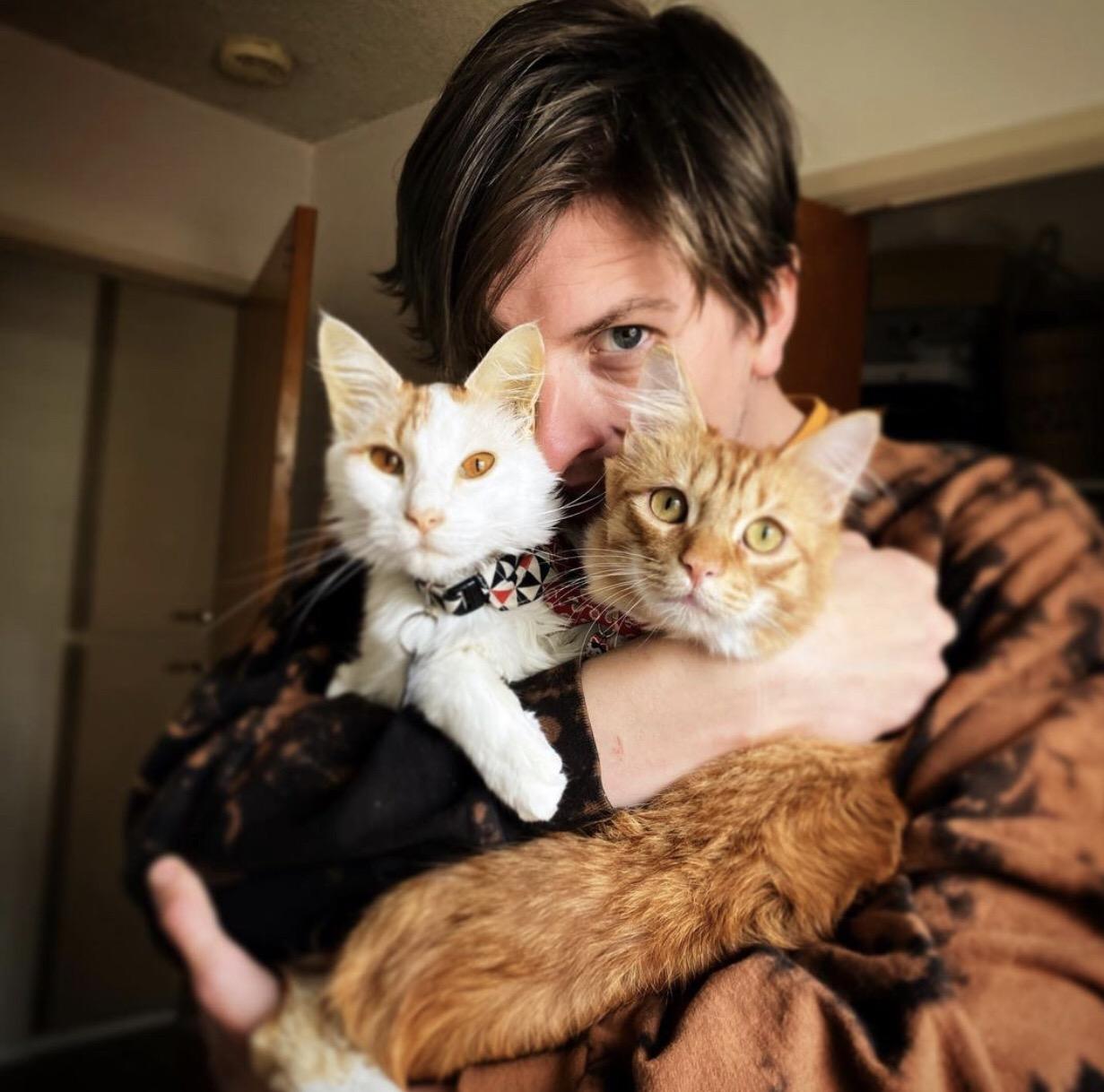 Matt Kean with his pet cats